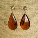 S natural amber cognac drops earrings #02