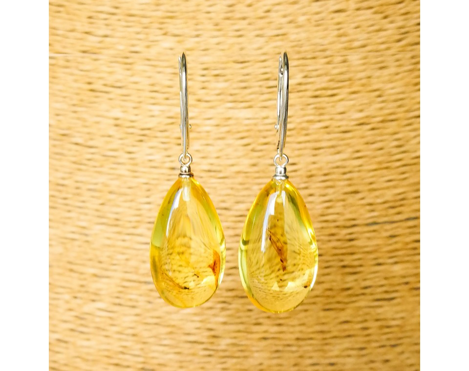 Natural amber earrings with inclussions #01