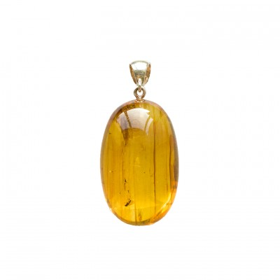 Amber pendant with inclussions #08