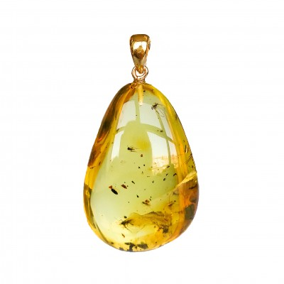 Amber pendant with inclussions #24